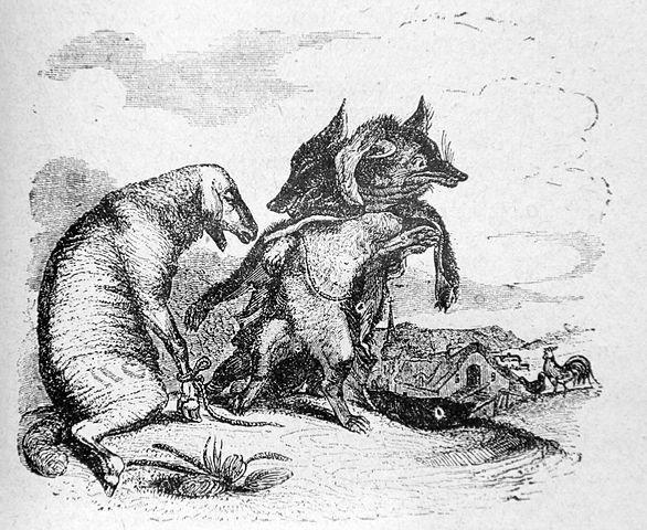 yel fox est le loup